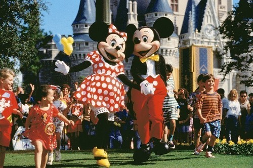 Where magic lives - walt-disney-world Photo