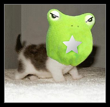 cat frog and fanpop?
