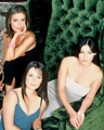 prue piper phoebe - charmed-sisters photo