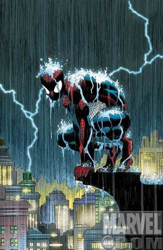 蜘蛛 man under rain