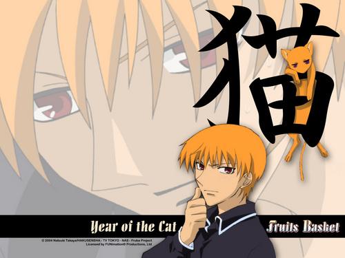 Cat Kyo 壁纸