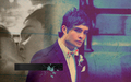 Chuck Bass - chuck-bass wallpaper