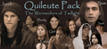 Quileute Pack - twilight-series fan art