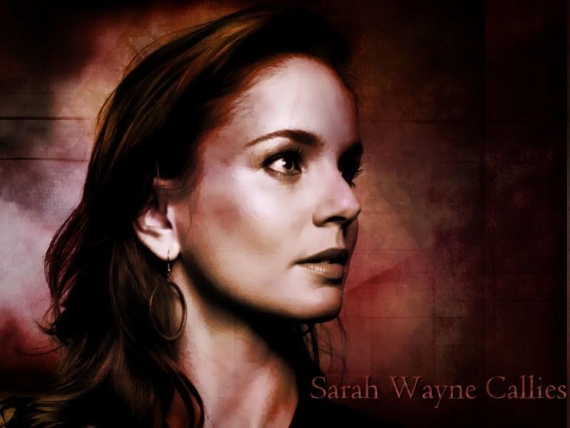 Sarah Wayne Callies - Photo Gallery