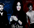The Choice - twilight-series photo