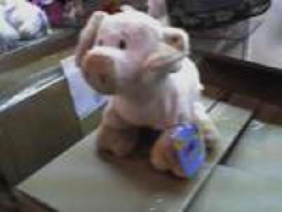 Velvety Pig Plush