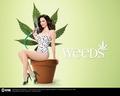 Weeds Season 4 Promo