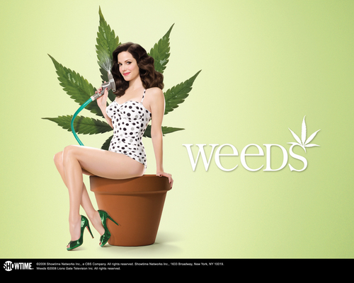 Weeds Season 4 Promo - weeds Photo