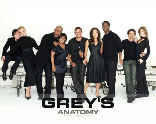 Grey's Anatomy Couples 壁纸 with a well dressed person and a business suit titled couples