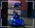 Bob - red-dwarf photo