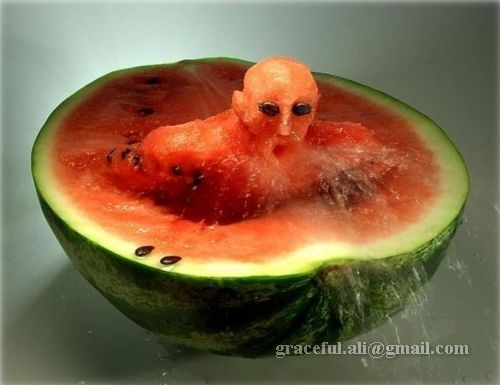 Funny Food - food Photo