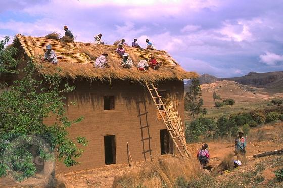 Madagascar Africa Foto 1699461 Fanpop