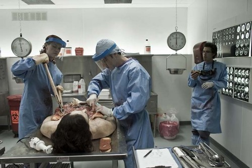 Pathology Promo Pic's