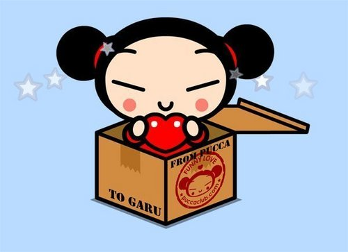 Pucca in a box