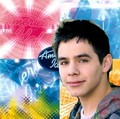 The American Idol Star (#1) - david-archuleta fan art