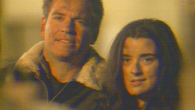 Tiva achtergrond probably containing a portrait titled Tony and Ziva