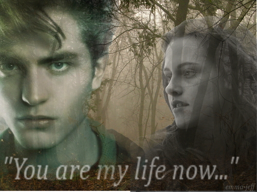 You are my life now... - twilight-series Wallpaper