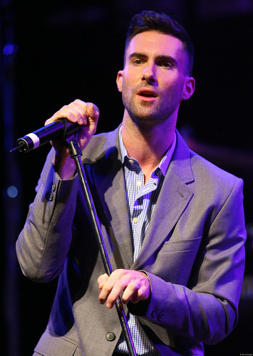 Adam Levine wallpaper probably containing a concert called adam levine