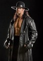 wwe superstars - wrestling photo