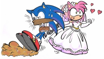 Amy's Wedding - Sonic and Amy Fan Art (1704588) - FanpopAmy And Sonic Wedding