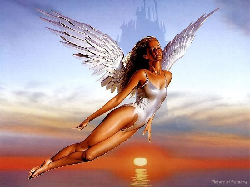 - Angel-fantasy-wallpapers-1730194-800-600
