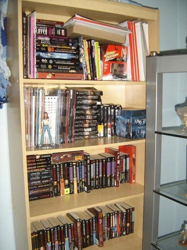 ArabellaElfie's Buffy Bookcase
