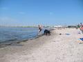 Dog de praia, praia in Sweden