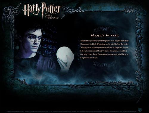 Harry Potter फिल्में वॉलपेपर possibly with ऐनीमे titled HP Bio