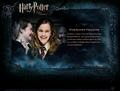 HP Bio - harry-potter-movies photo