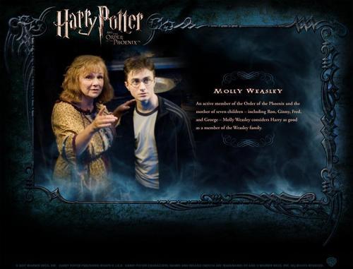 Harry Potter फिल्में वॉलपेपर with ऐनीमे called HP Bio