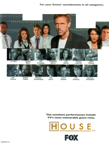 House MD Poster (Season 2)