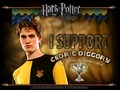 I support Cedric Diggory - harry-potter-and-the-goblet-of-fire wallpaper