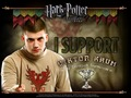 I support Viktor Krum - harry-potter-and-the-goblet-of-fire wallpaper