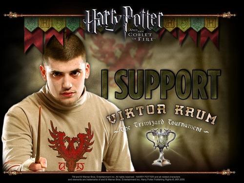 I support Viktor Krum