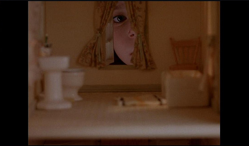 Looking into the dollhouse