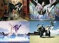 MTV - Identificaiton