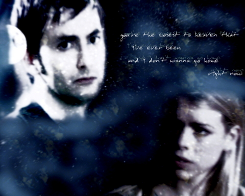 Rose/Doctor - doctor-who Wallpaper