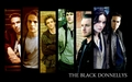 The Black Donnellys Widescreen دیوار