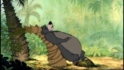 প্রথমশ্রেণীর ডিজনি দেওয়ালপত্র possibly with জীবন্ত called The Jungle Book