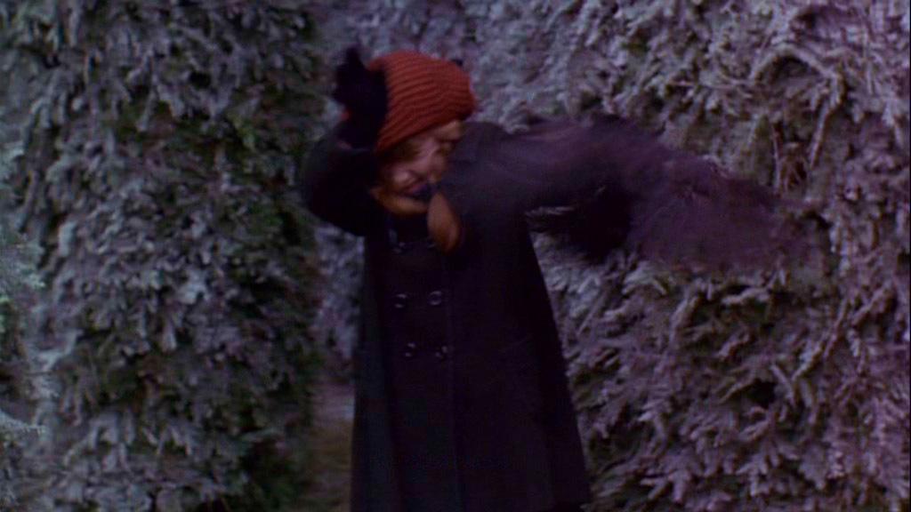 The Secret Garden Screencaps Movies Image 1754042 Fanpop