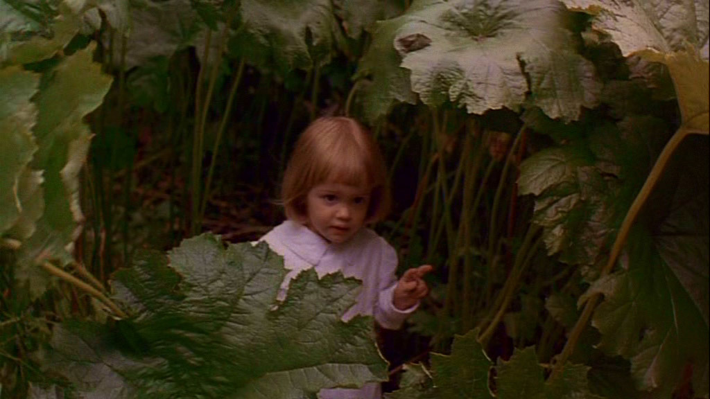 The Secret Garden Screencaps Movies Image 1754102 Fanpop