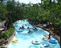Typhoon Lagoon Water Park