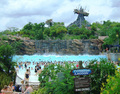Typhoon Lagoon Water Park