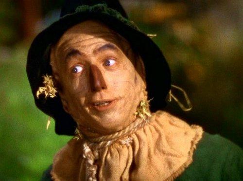 Le Magicien d'Oz fond d'écran probably containing a dashiki, a surcoat, and a chemisier entitled Wizard of Oz trophée