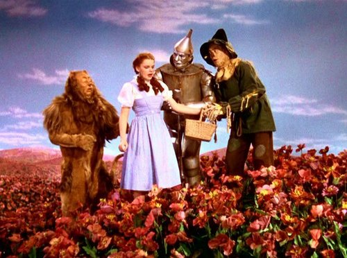 The wizard of oz images wizard of oz caps hd wallpaper and background photos 1739011 - The wizard of oz hd ...