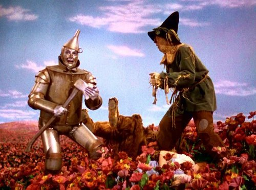 The wizard of oz images wizard of oz caps hd wallpaper and background photos 1739021 - The wizard of oz hd ...