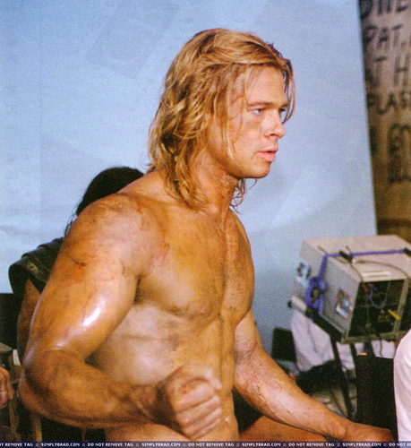 Brad Pitt wallpaper possibly with a hunk, a six pack, and skin called troy!