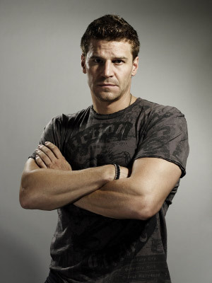 David Boreanaz wallpaper possibly containing a hunk and a portrait titled David Boreanaz