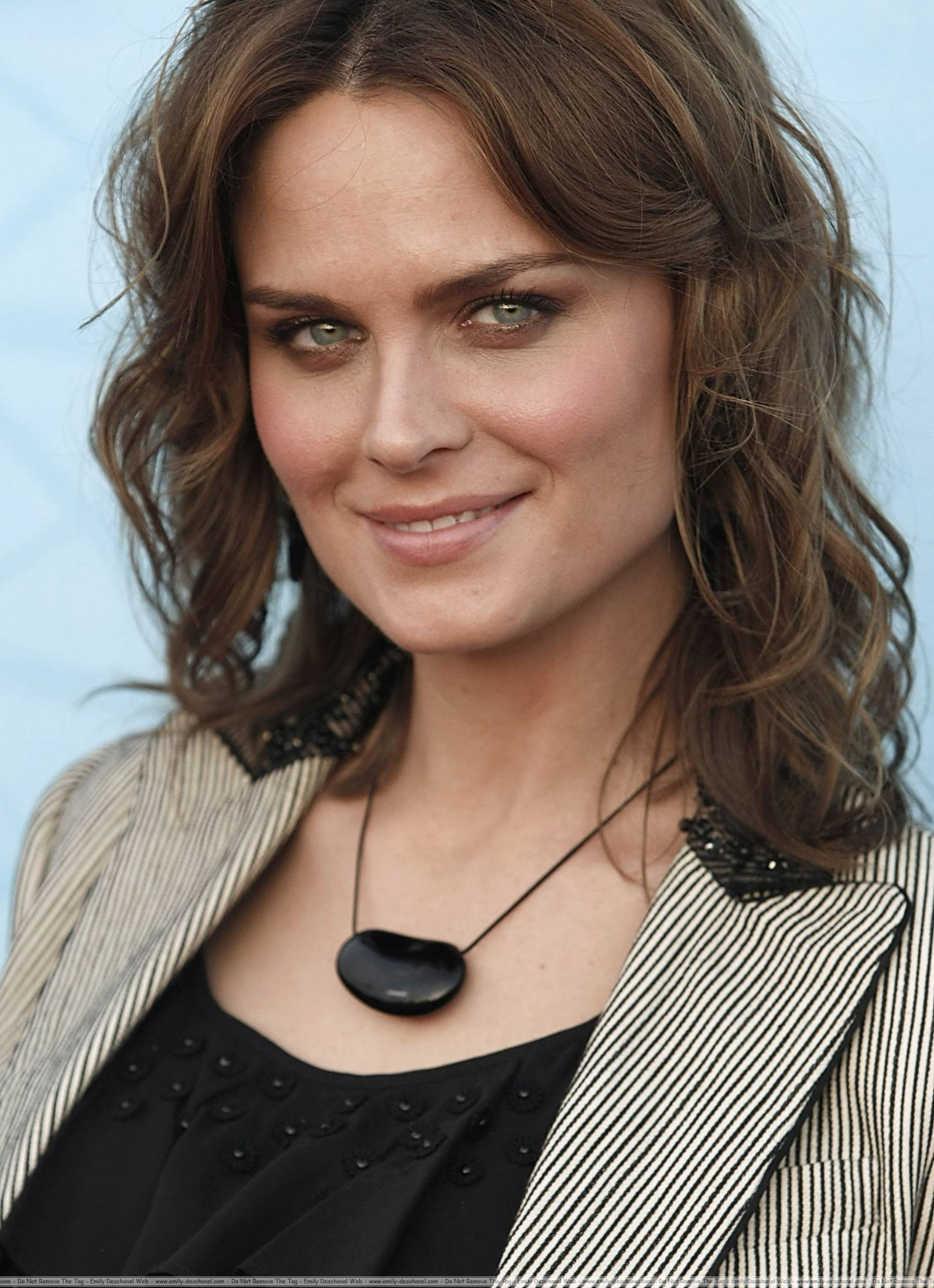 Emily Deschanel - Fox TCA