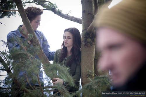 In arbre
